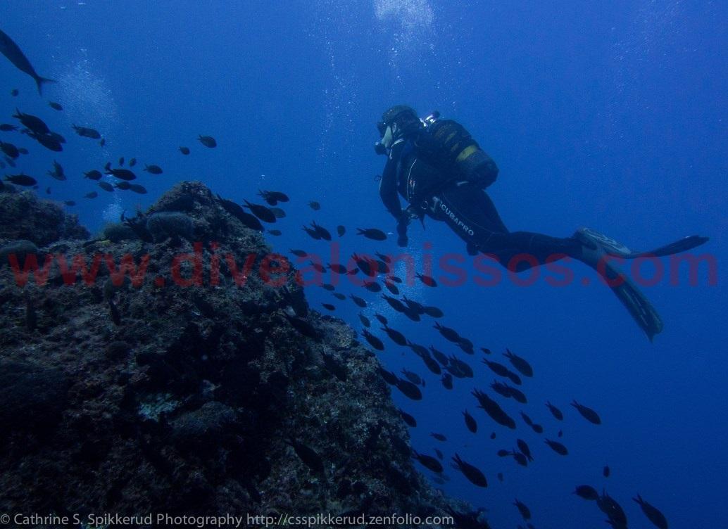 Scuba Diving on Alonissos with Alonissos Blue Dive Center