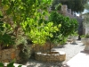 Villa Folia Garden