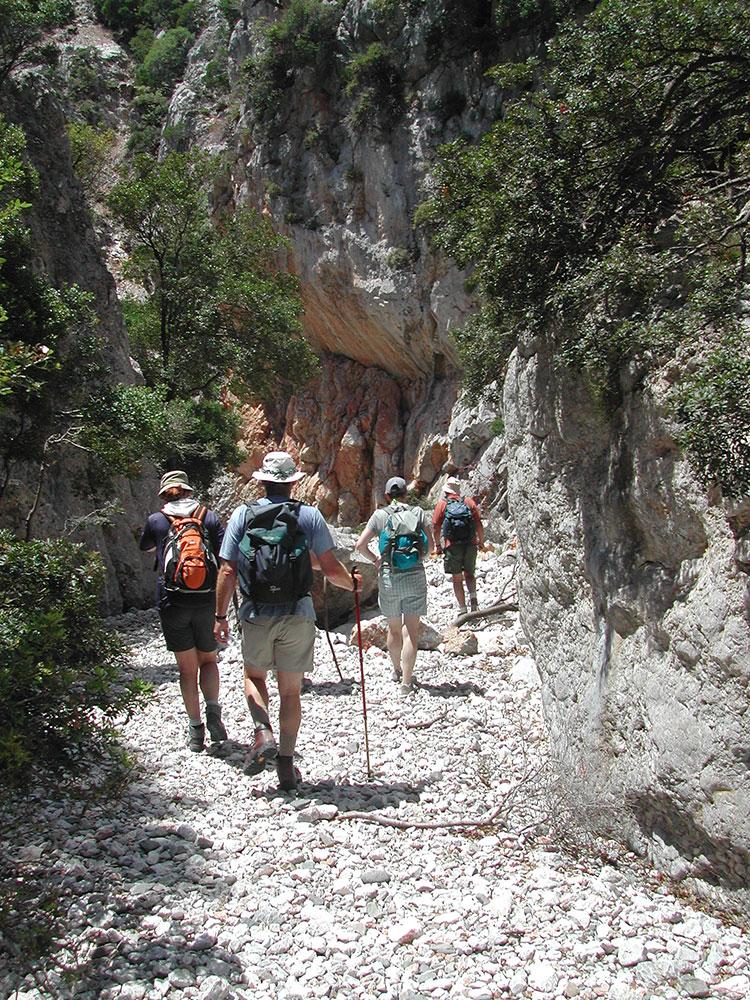 Kastania Gorge Walk